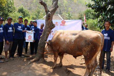 Dari Hewan Kurban hingga Air Bersih, Relawan Muhammadiyah Sisir Wilayah Pelosok